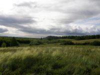 Вид на надпойменные террасы реки Иня (комплекс разновременных поселений)