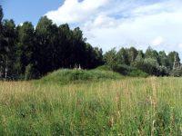 Курганный могильник на лесной озёрной террасе в Болотнинском районе